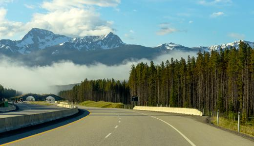 Well-designed road gently curves toward mountain